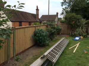fencing-in-spetisbury